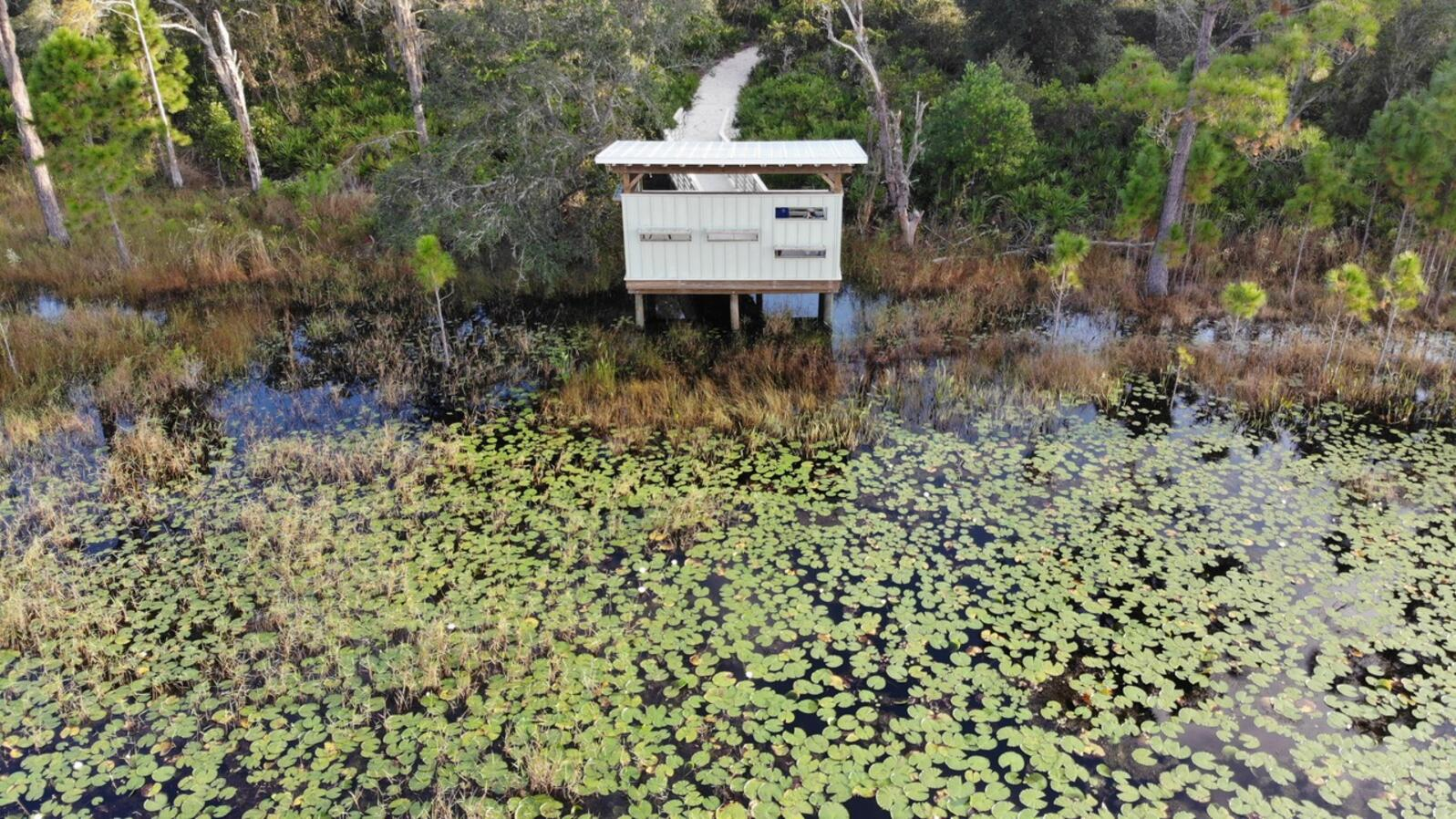 Bird blind and study site. Photo: SWFWMD