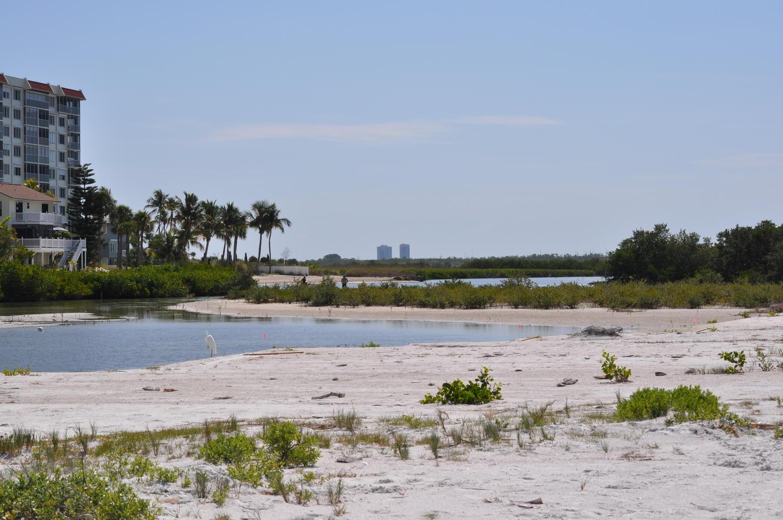 Little Estero CWA beach
