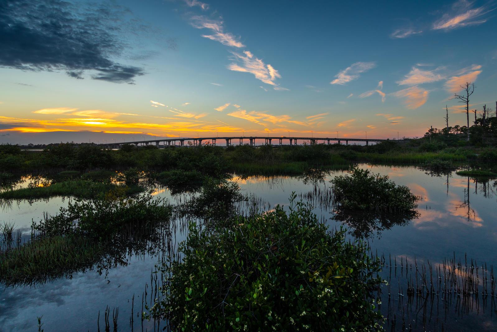 Fish Island. Photo: Monarch Studio, Scott S. Smith