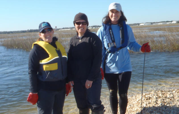 Volunteers Help American Oystercatchers in the Tolomato River