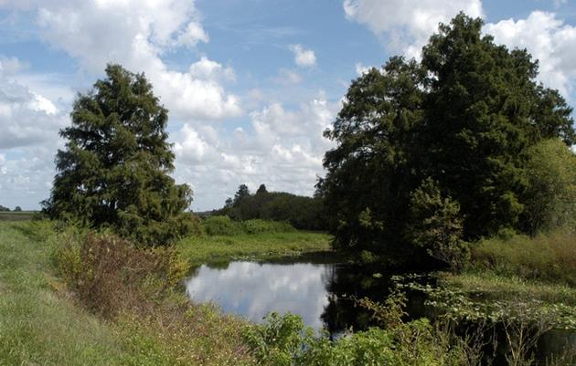 Northern Everglades
