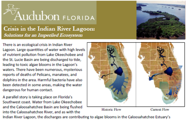 Crisis in the Indian River Lagoon: Solutions for an Imperiled Ecosystem