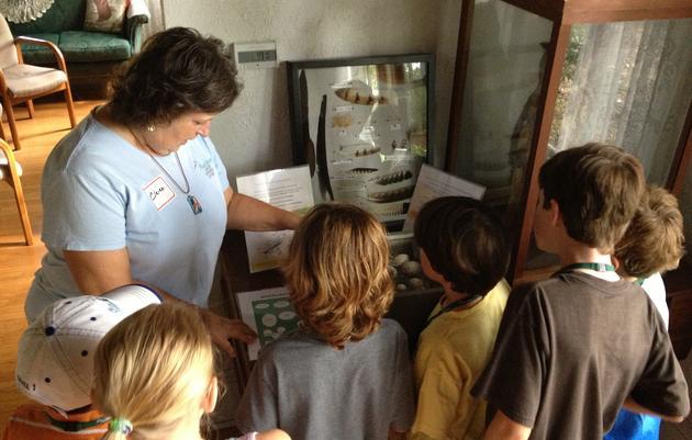 Volunteer at the Audubon Center for Birds of Prey