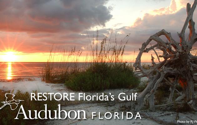 RESTORE Florida's Gulf