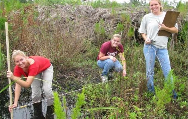 Volunteer at Audubon's Corkscrew Swamp Sanctuary