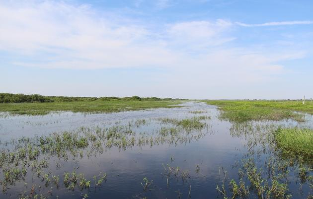 A Restored Kissimmee River in Sight