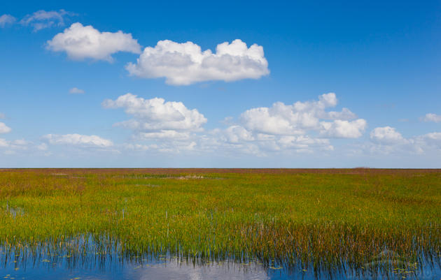 Lake Okeechobee and the Central Everglades