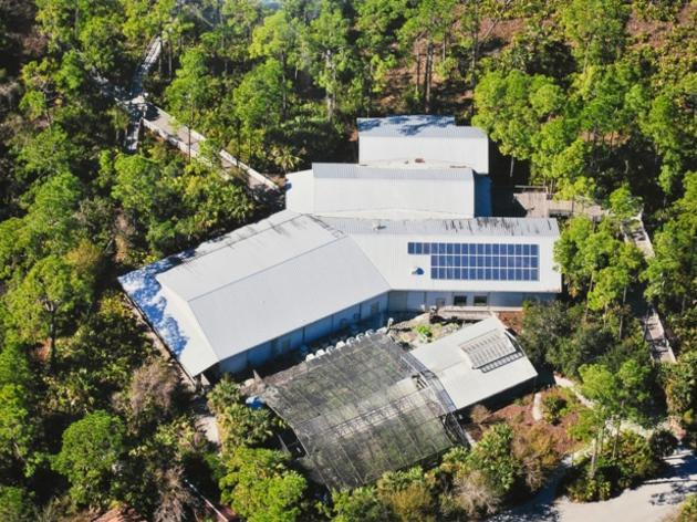 Audubon's Corkscrew Swamp Sanctuary Goes Solar