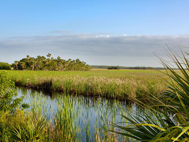 STATEMENT: Army Corps of Engineers Responds Positively to Everglades Bill Advancing EAA Reservoir