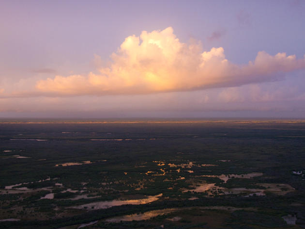 Everglades Restoration and Climate Change Adaptation Highlighted in President's Climate Action Plan