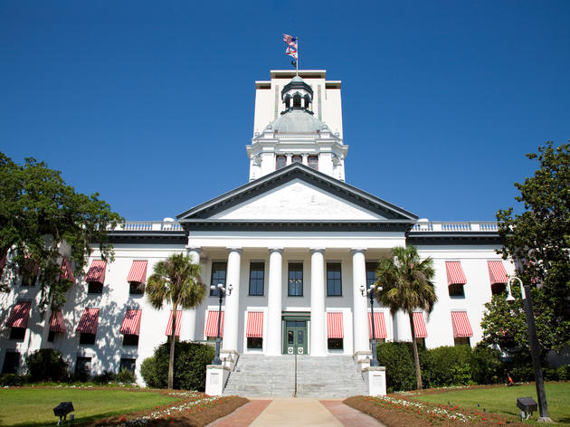 Audubon Florida Prepares for 2017 Legislative Session