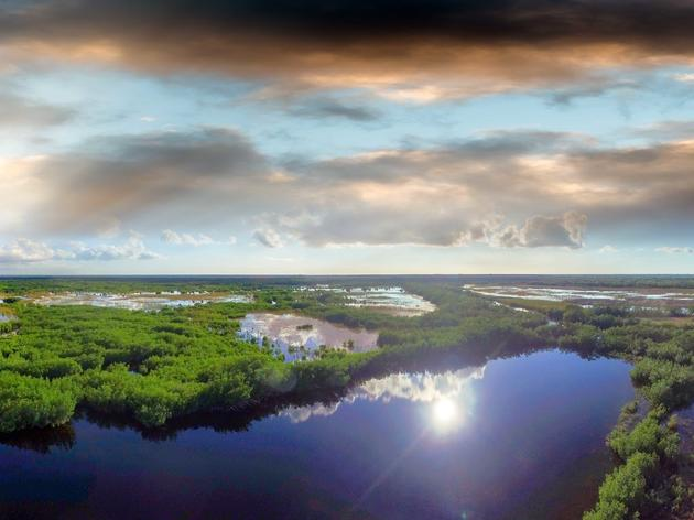 Federal Rule to Protect Wetlands is Under Attack