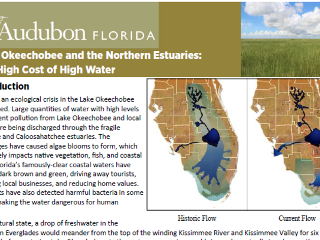 Lake Okeechobee and the Northern Estuaries: The High Cost of High Water