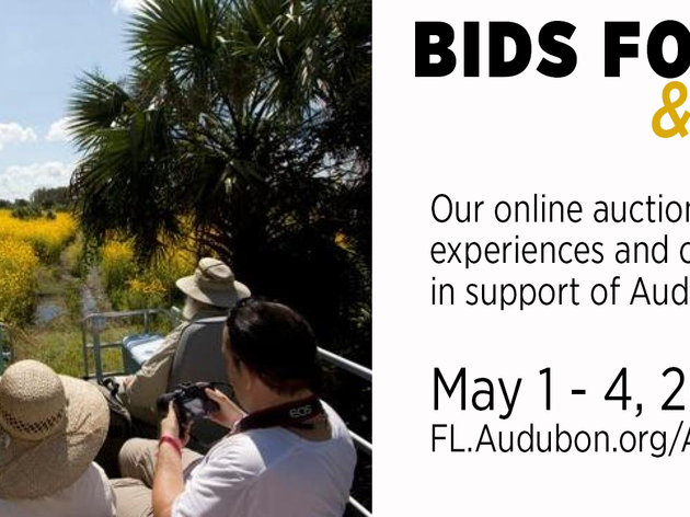 Bids for Birds and Beyond
