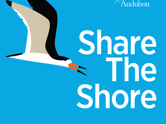 Share the Shore this Fourth of July Weekend