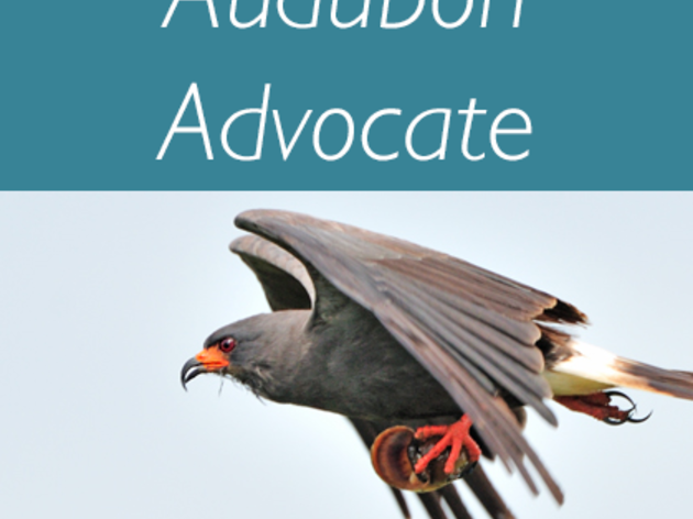 Audubon Advocate: 2017 Legislative Session - Week 3 Update