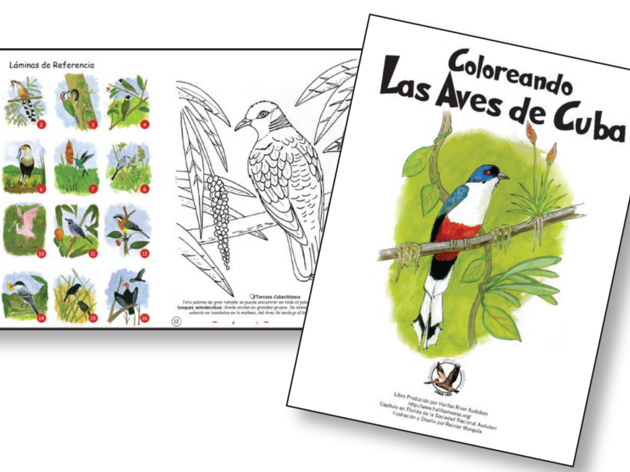 Cuba's Children Inspire Audubon Chapter
