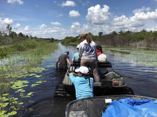 Audubon's Western Everglades Research Center Guides Restoration