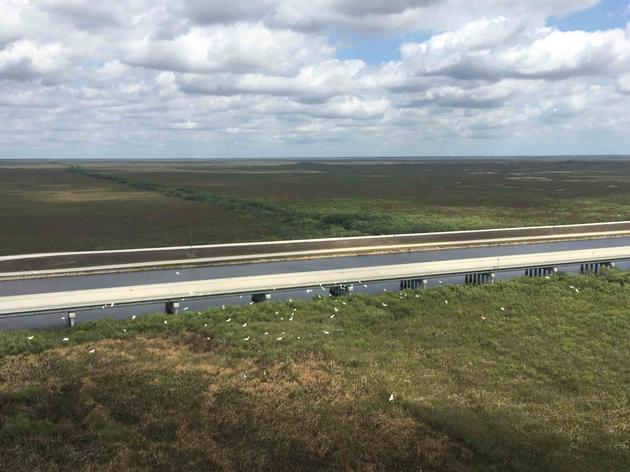 Southern Everglades Projects Coming Together for Florida Bay