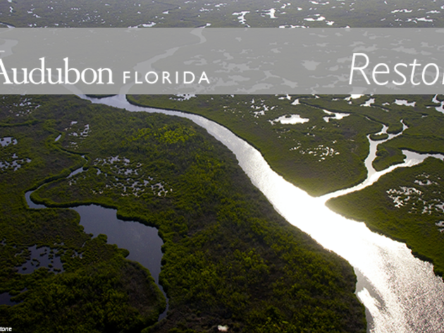 Restore: Oct. 2017 Updates from America's Everglades