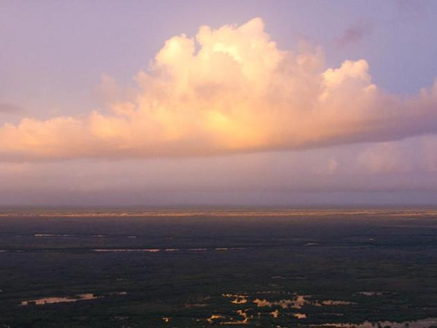 Four big victories for America's Everglades