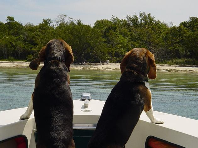 A day in the Keys: always something to look forward to.