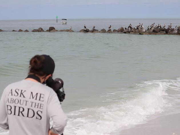 A Season in the Life of a Bird Biologist: Rochelle Streker Boats to Barrier Islands