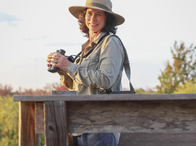 Meet Lisa Korte, Ph.D., Sanctuary Director, Corkscrew Swamp Sanctuary