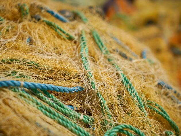 Volunteers Needed for 27th Annual Fishing Line Cleanup