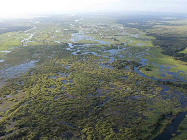 Kissimmee River Restoration Project 90 Percent Built and Already a Model for Restoration