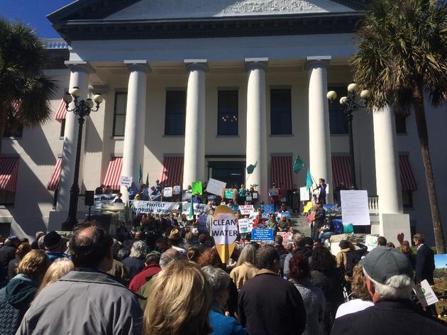 Audubon Rallies for Amendment 1 at the Capitol