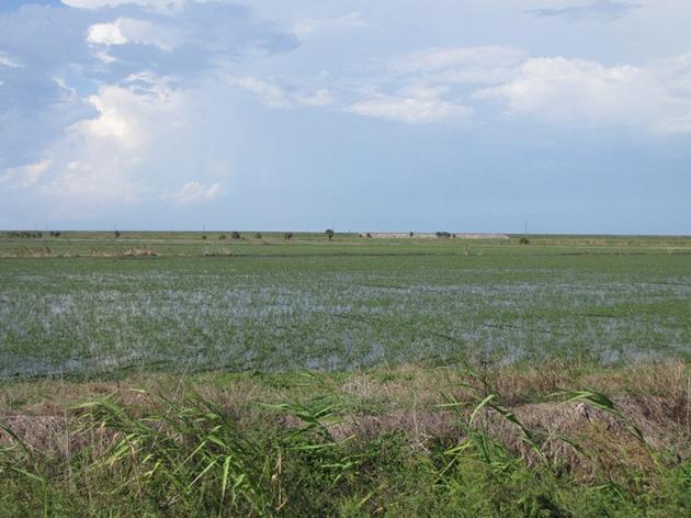 Coastal Water Crisis Update: Senator Negron Champions EAA Reservoir