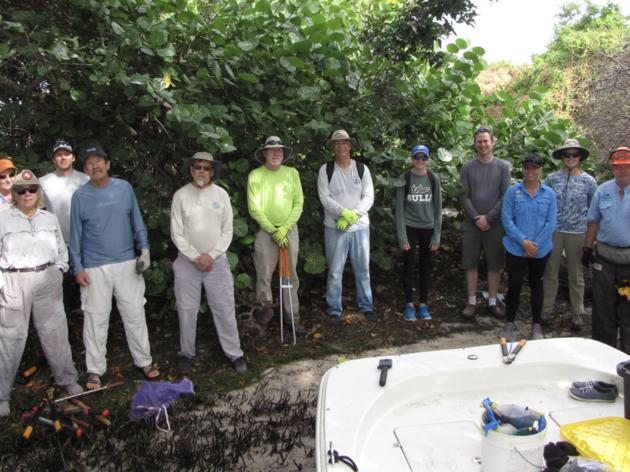 Audubon Teams Up to Restore Little Bayou Bird Island for Nesting Species