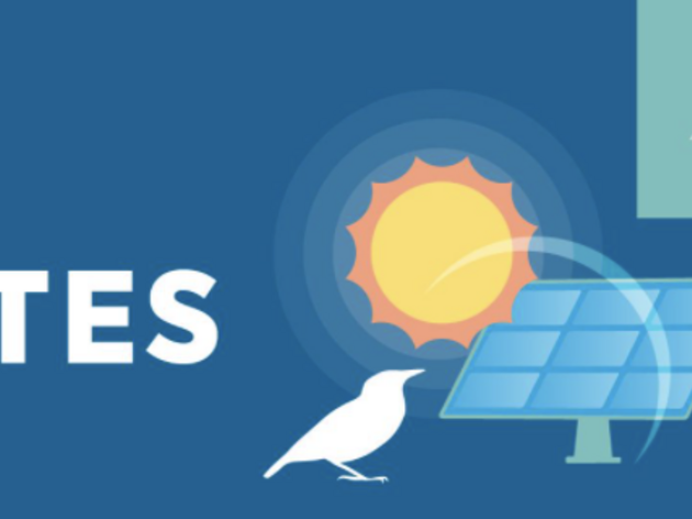 Audubon Florida Dispels Solar Site Myths with New Video and Infographic