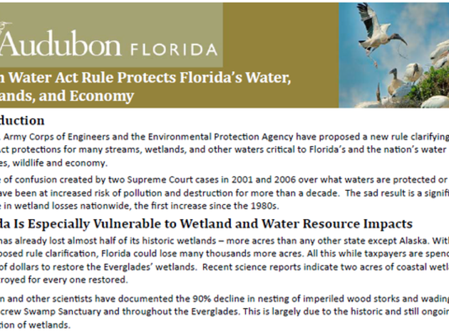 EPA and Army Corps to Clarify Muddy Definitions of Wetlands and Water