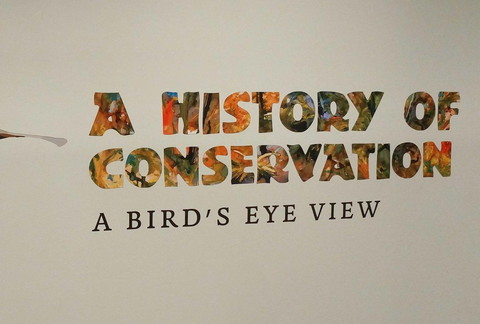 A History of Conservation