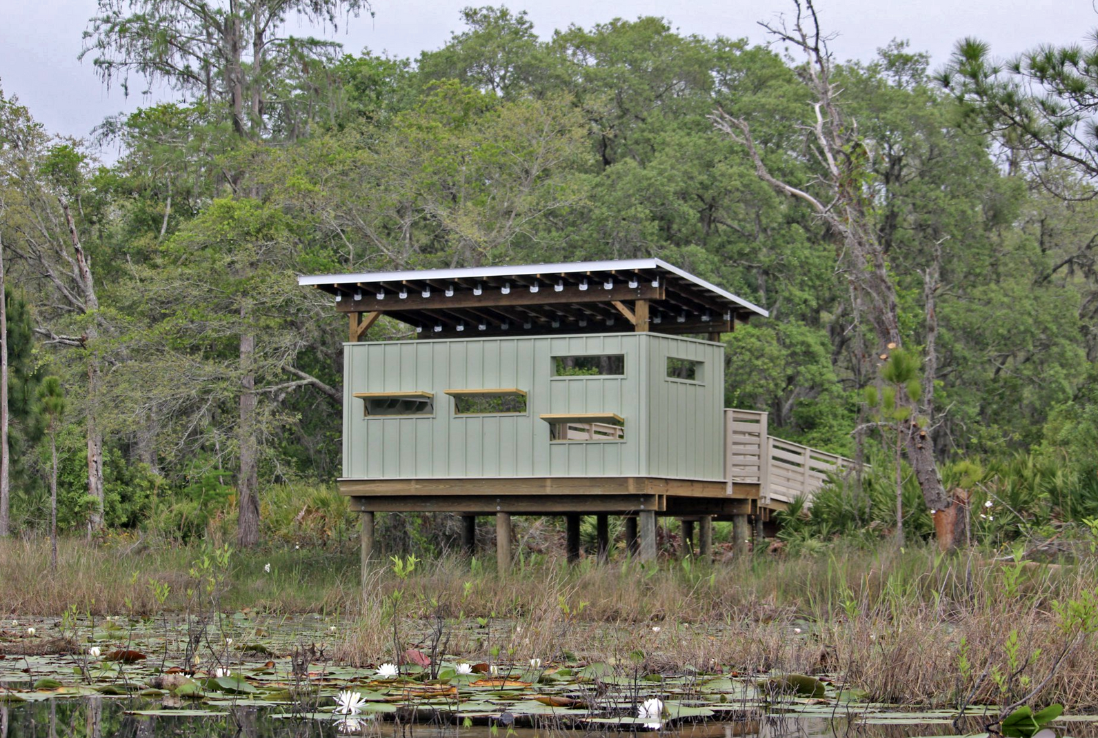 Bird blind. Photo: Mark Berlinger.
