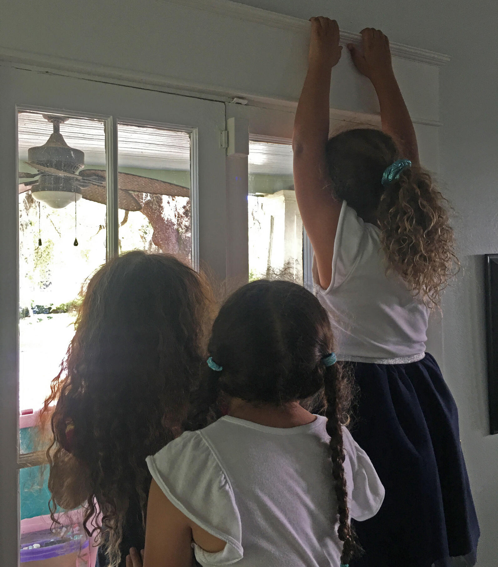 Kids watching the Mourning Dove nest.