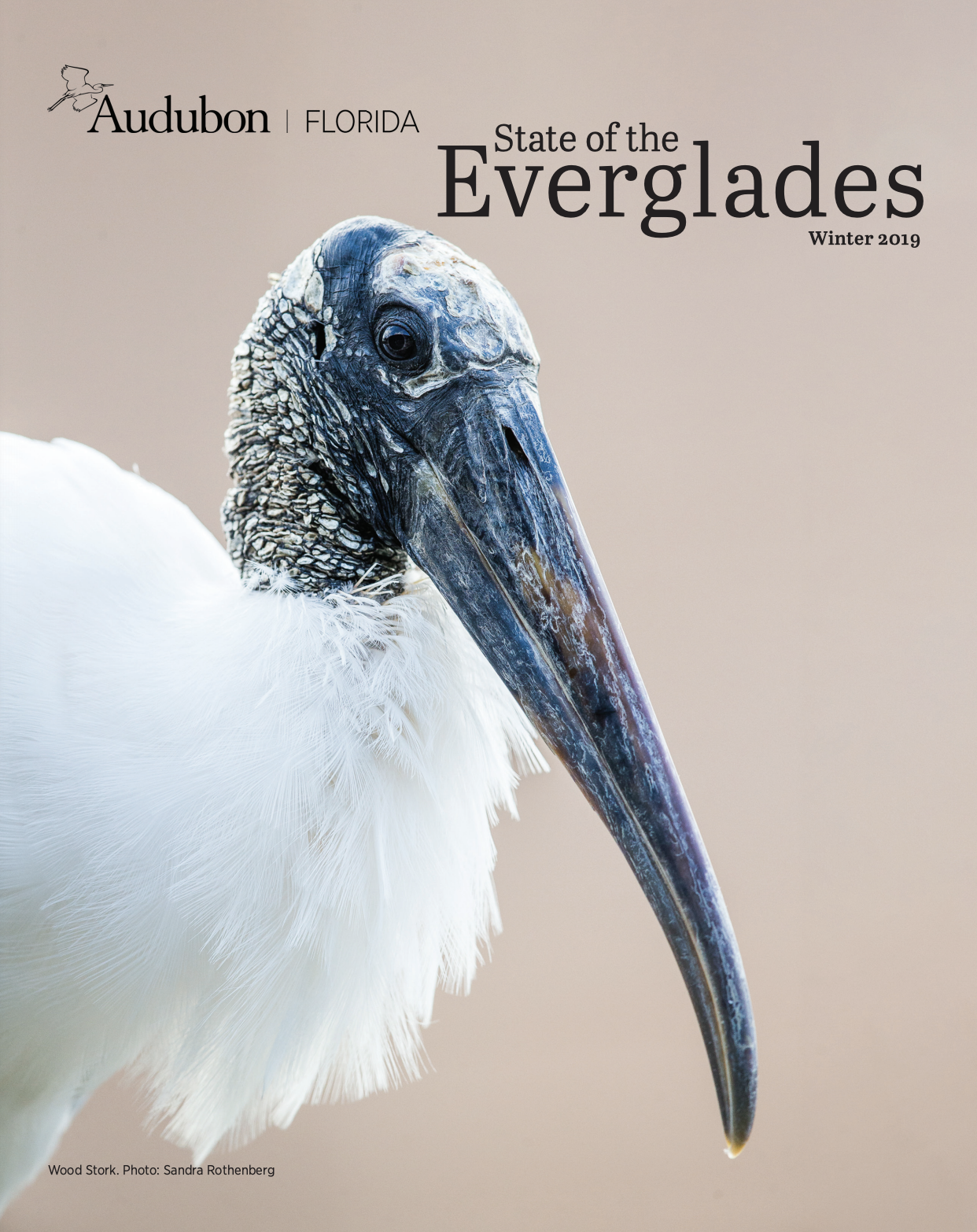 Cover of the State of the Everglades Report, Winter 2019.