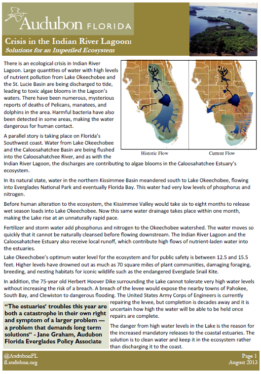 Crisis In The Indian River Lagoon Solutions For An Imperiled