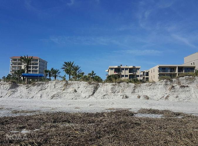 Picture showing eroded dunes at Jacksonville Beach