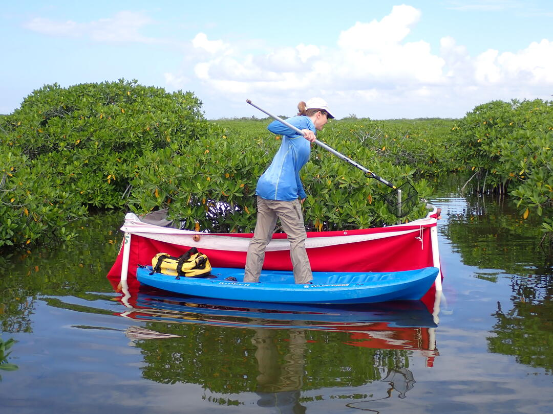 Audubon biologist Devon Nemir Pepe samples fish in Florida Bay to measure the effectiveness of Everglades Restoration projects. Photo: Anna Simmons.